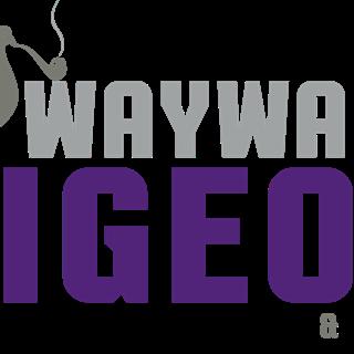 The Wayward Pigeon  - Hamilton