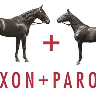 Saxon + Parole - Auckland CBD