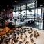 Marvel Bar & Grill - Auckland (1)