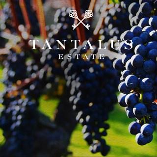Tantalus Estate - Onetangi, Waiheke Island