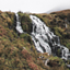 Mac & Wild - Falls of Shin  - Scotland (3)