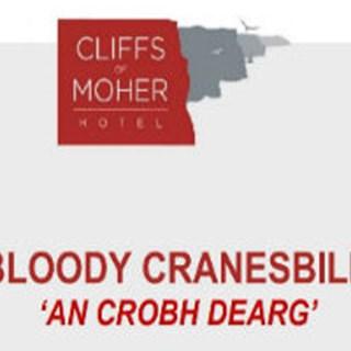The Bloody Cranesbill Gastrobar - Liscannor