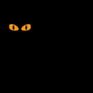 El Gato Negro Tapas Leeds - Leeds