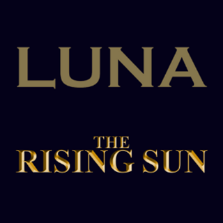 Luna Nightclub / The Rising Sun Pub - Hornchurch