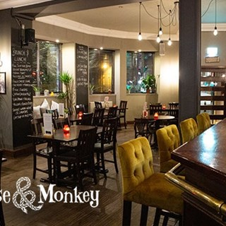 The Noose and Monkey - Aberdeen,
