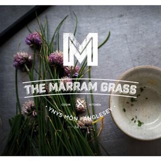 The Marram Grass - Newborough