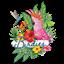 Birdies Birmingham  - Birmingham (1)