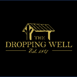 The Dropping Well - Dublin