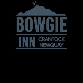 BOWGIE INN - NEWQUAY