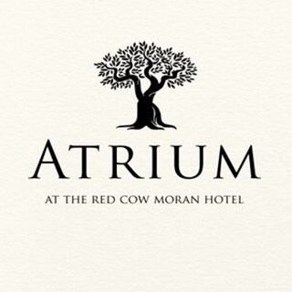 The Atrium - Dublin