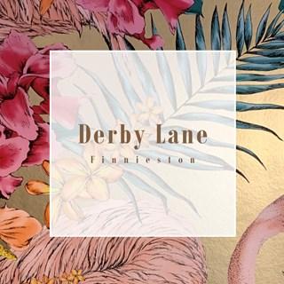 Derby Lane - Glasgow