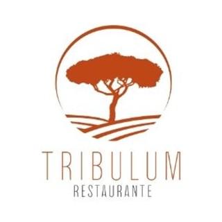 Tribulum  - Almancil