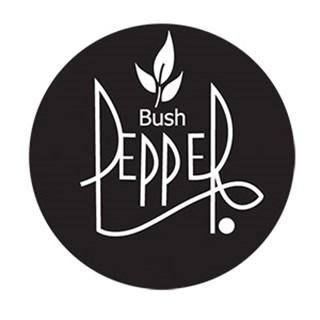 Bush Pepper - Newquay