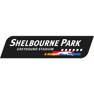 Shelbourne Park Greyhound Stadium - Dublin