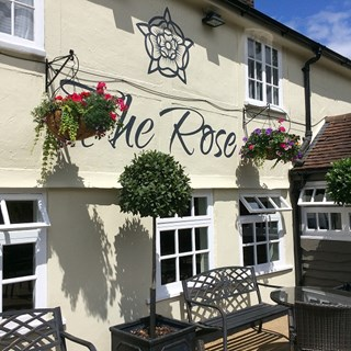 The Rose - Shenfield