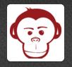 Red Monkey - Seattle